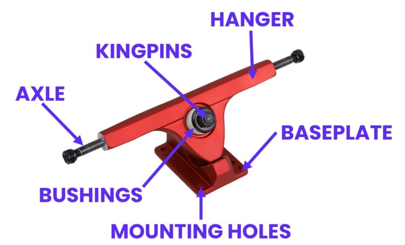 Skateboard trucks parts and components illustration